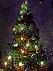 Christmas-Tree-WP